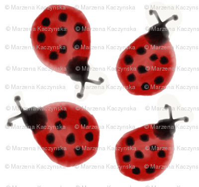 Ladybug watercolor, ladybirds watercolour, cheerful bugs, colourful, kids, baby, nursery || by sunny afternoon