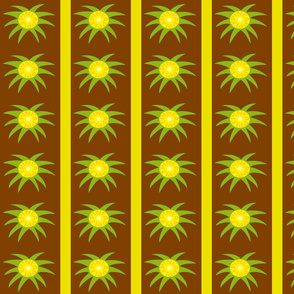 Pineapple field stripes