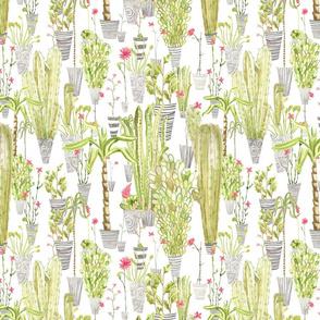 flowerspot_garden_white