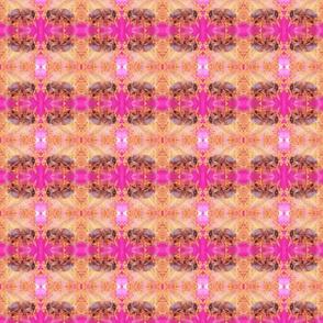 Bee_in_rose