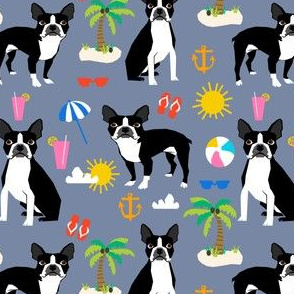boston terrier, beach fun cute beach summer tropical dog cute dog