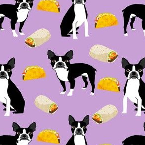 Boston Terrier Tacos, food, novelty, tacos, mexican food, cute dog, dogs, funny dog print