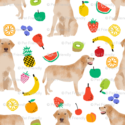 Labrador Retriever Yellow Lab Lab Dog Dogs Dog Fruit