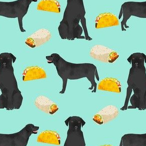 Black Labrador, tacos, food, black lab, labrador retriever, food, novelty dog print for lab owners, cute dogs dog print