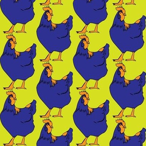 Hens blue yellow