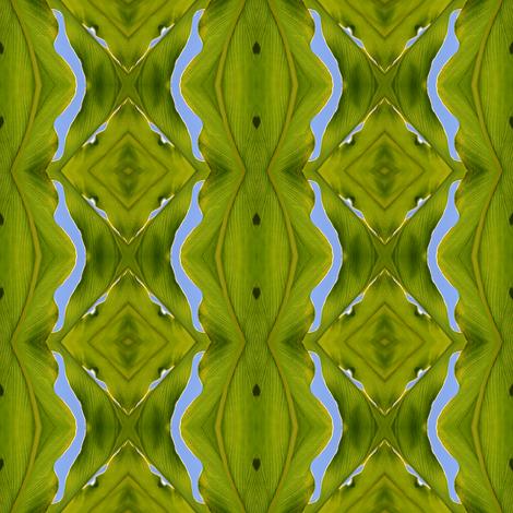 papaya wallpaper etinkler spoonflower