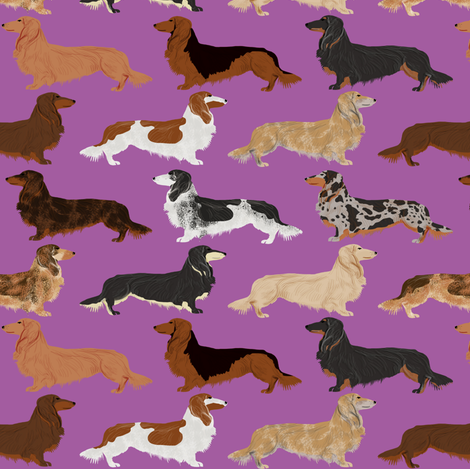 dachshunds long haired doxie dog pet dog cute dog fabric fabric by petfriendly on Spoonflower - custom fabric