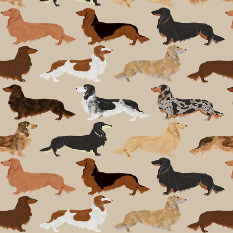 long haired dachshunds dogs pet dog cute pets weenie dogs sausage dog pets dog fabric by petfriendly on Spoonflower - custom fabric