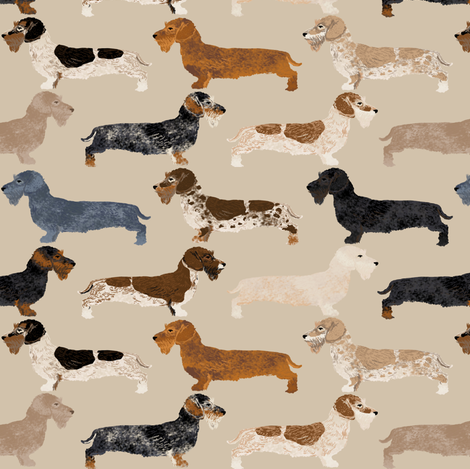 doxie wire haired doxie dogs tan dachshunds doxie wiener dogs fabric by petfriendly on Spoonflower - custom fabric
