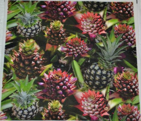 Pineapple Flower to Fruit