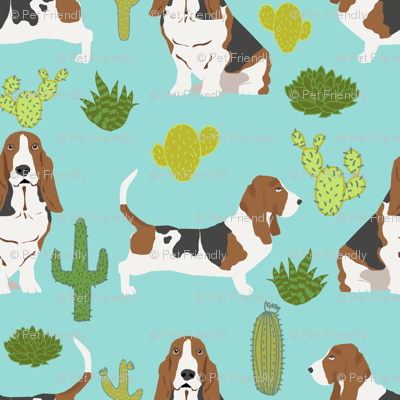 basset hound mint cactus sweet pet dog summer tropical trendy design plants for basset hound owners