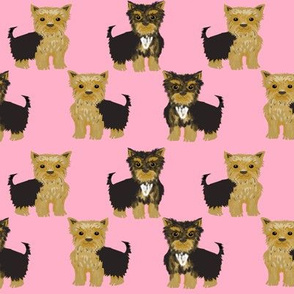 yorkshire terrier yorkie cute dog pet pets dog yorkie fabric pink cute yorkie