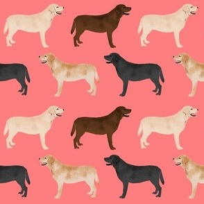 labrador retriever coral pink cute lab dogs fabric yellow lab chocolate lab black lab fabric for labrador owners cute lab fabric