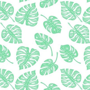 Philodendron - Mint Green