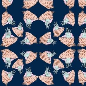 Mirror Conch-Navy