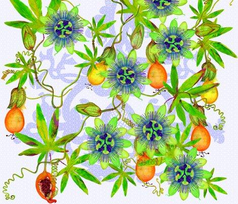 Rrterepassifloraprincipal0smallscale_shop_preview
