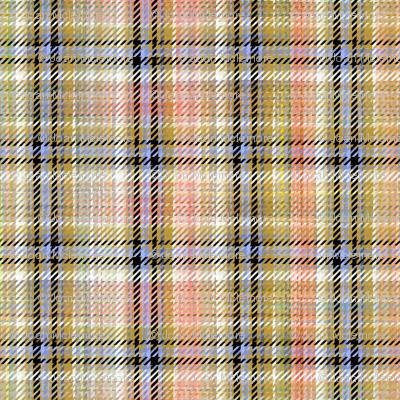 Weaver's Coverlet