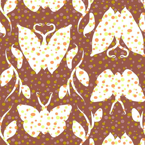 Rrdotty_butterfly_column_on_cocoa_shop_preview