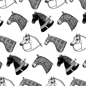 Horses in B&W
