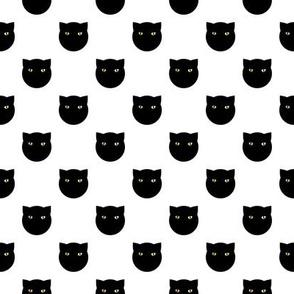 black polka dot cat