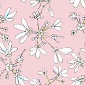Coriander Pink
