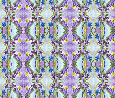 Rrvdortona-irises_shop_preview