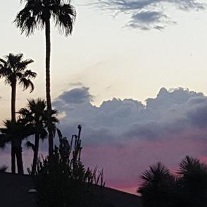 az_wx_cloud_tempe_pink_purple_saguaros_palms_GOOD_horiz2015-10-29_17
