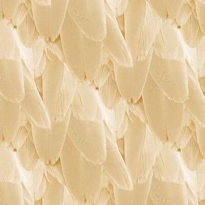 bird feather - light brown