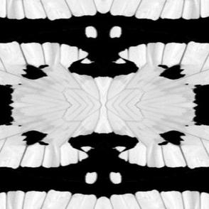 tribal butterfly stripes