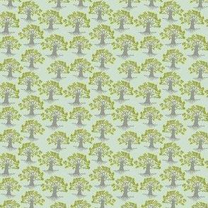 mini oak trees on duck egg