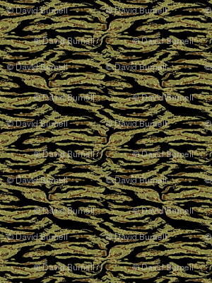 American_tigerstripe_gold_camo_2.pdf.png_preview