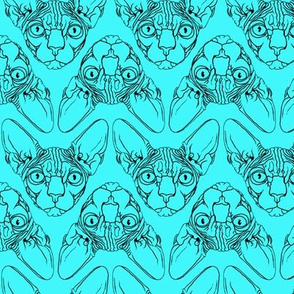 Sphynx lines fabric Turquoise