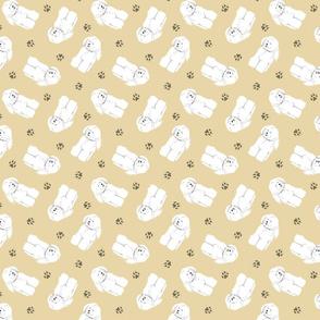 Tiny Bichon Frise - tan