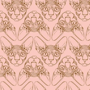 Sphynx lines fabric peach & brown