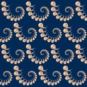 snail_swirl_2-01
