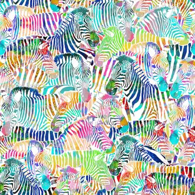 Zebra Rainbow (Large Scale)