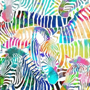 Zebra Rainbow (Large Scale)