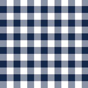 "Navy and white 5/8"" check"