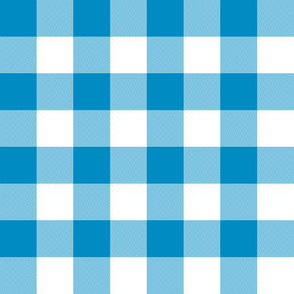 Bright blue and white one inch gingham