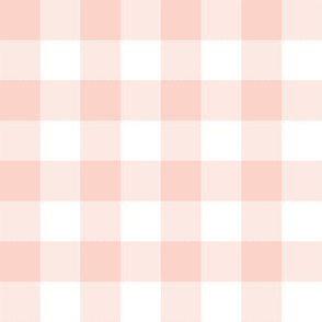 Pale coral and white one-inch gingham check
