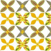 Real_leaf_pattern_w_flowers_shop_thumb