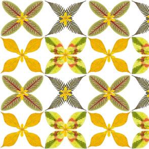 Real leaf pattern