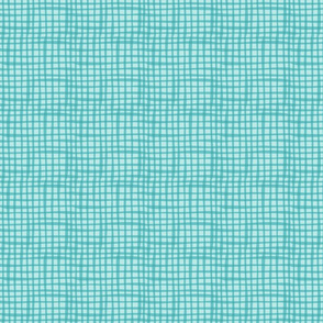 BZB Perfect Gingham Aqua2