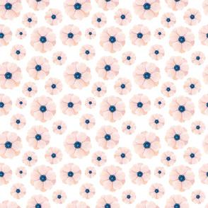 Anemones - on white