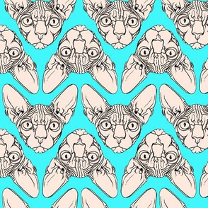 Sphynx_fabric_2