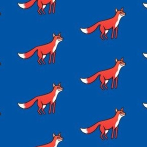 Foxes on blue