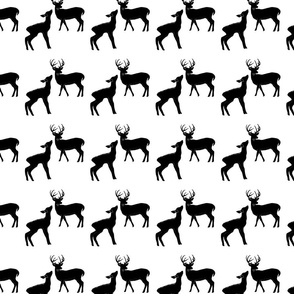 Black & White Deer in the Woods