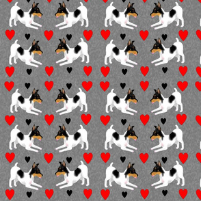 Toy Fox Terriers with Hearts