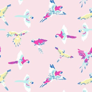 parrot_pink