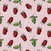 Rrrwonky_raspberryj3_shop_thumb